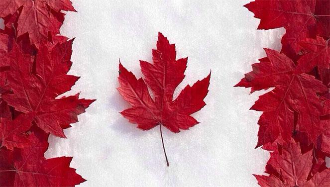 канада официальные языки