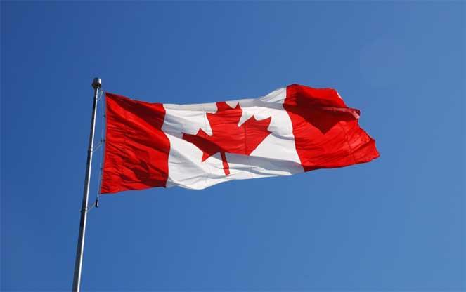 Сертификация электриков в канаде csoft сертификация autocad